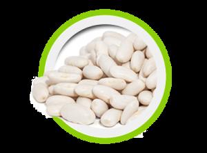 Keto Slim Fit - Estratto di Phaseolamine