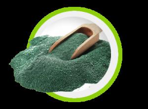 Keto Slim Fit - Alghe Spirulina